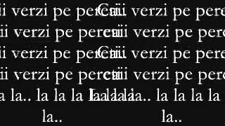 Smiley & Alex Velea feat. Don Baxter - Cai verzi pe pereti ( Lyrics)