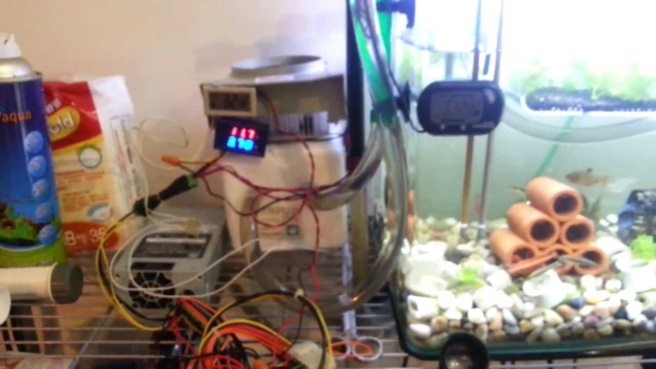 Diy 魚缸冷水機12V~6A Peltier effect(珀爾帖效應)   FunnyDog.TV