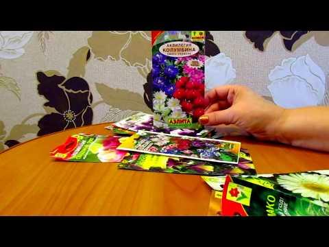 видео: Семена 2018.Цветы многолетние.Часть 3. Неприхотливое очарование.