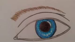 How to draw a ey, Wie male ich ein Auge
