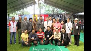 KINTAMANI BALI DOG ORIGIN: Republic of Indonesia. Sukawana, a villa...