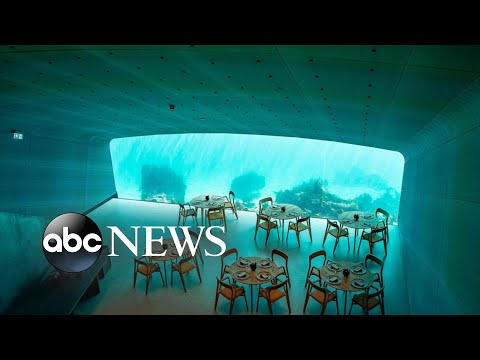 None - World's Largest Underwater Restaurant Has Opened