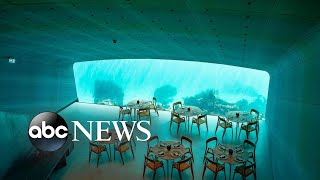 Dine under the icy sea at Europe's first underwater restaurant l GMA Digital