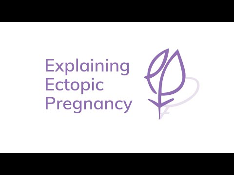 Explaining Ectopic Pregnancy: Trying to conceive again (with subtitles)