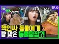 [SUB] 친화력 갑 아이돌 예나! 핵인싸 동물들과 하루만에 절친 도전?! with 에버글로우 시현ㅣ예나는동물탐정 EP.10