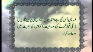 Surah Al-Shams (Chapter 91) with Urdu translation, Tilawat Holy Quran, Islam Ahmadiyya