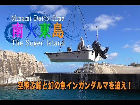 南大東島 幻の魚 インガンダルマとナワキリ