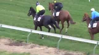Dandino Jumpout & Darren Weir Interview July 29 2015