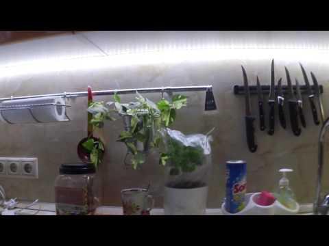 Освещение рабочей зоны на кухне / Вытяжка и рабочий стол