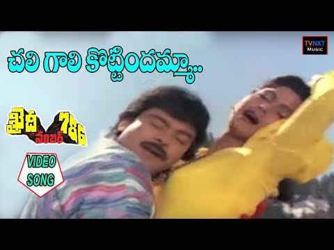 చిరంజీవి హిట్ వీడియో సాంగ్స్ -  Chali Gali Kottindamma || Khaidi No 786 Video Songs || TVNXT Music