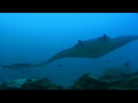 Micronesia Yap Travel Tipps