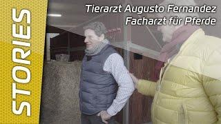 Gestüt Hof Warendorf - Tierarzt Augusto Fernandez Facharzt für Pferde