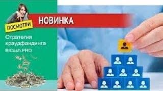 BICash PRO НОВИНКА  ОБЗОР ОТ АДМИНА СТАРТ 09 08 2018