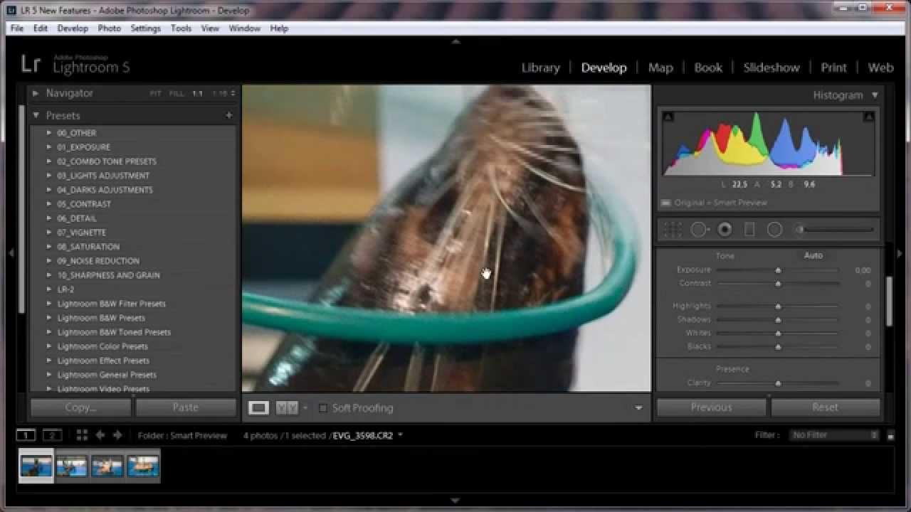 провели как делать превью фото в лайтрум воробьев признается