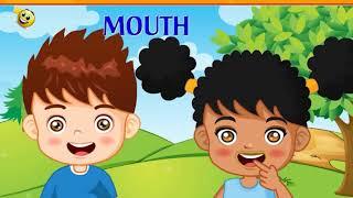 Bộ Phận Trên Khuôn Mặt Bằng Tiếng Anh Cho Trẻ/tiếng  anh cho trẻ mẫu giáo