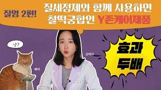 Y존 케어 2편 : 질염 예방 화장품 (질염자연치료)