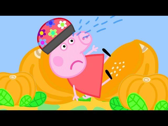 Peppa Pig Français ! 🎃 Oh non, Peppa ! | Dessin Animé Pour Bébé