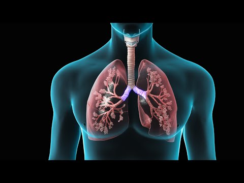 Spirometry | Test for Lung Function | Nucleus Health