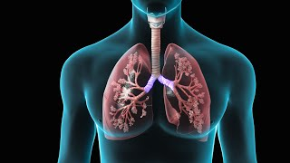 Spirometry Test for Lung Function