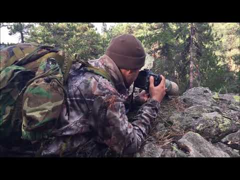 A Day In The Life Of A Wildlife Photographer