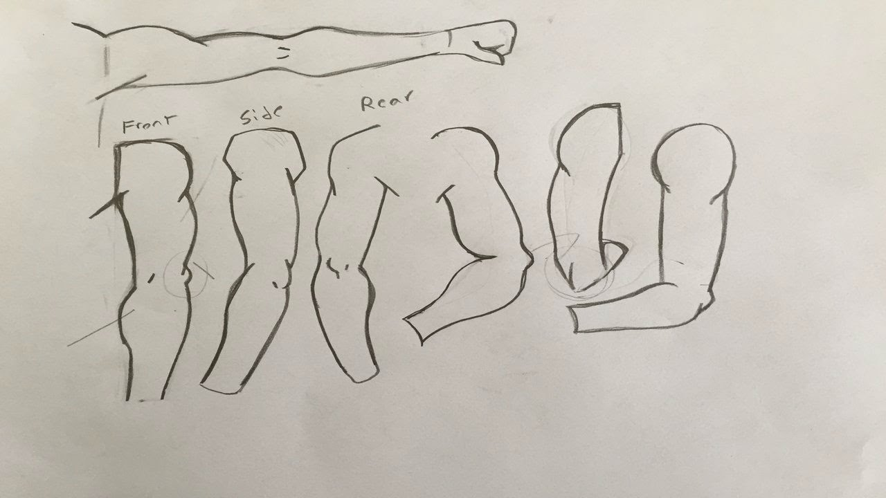 How To Draw Manga Arms For Beginners