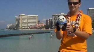 Honolulu Hawaii Travel Guide