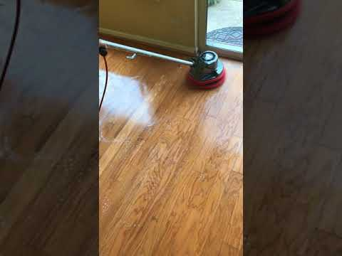 The clean Genius doing some hardwood floors with Squeaky clean