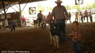 Newton County Fair, 2014 Slideshow