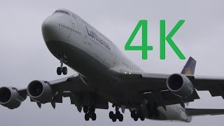 4K Planespotting at Washington Dulles Airport: 747s, A340, 777s, A330s, 787s, and 767s