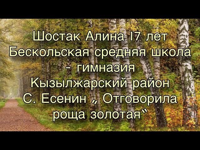 Изображение предпросмотра прочтения – АлинаШостак читает произведение «Отговорила роща золотая» С.А.Есенина