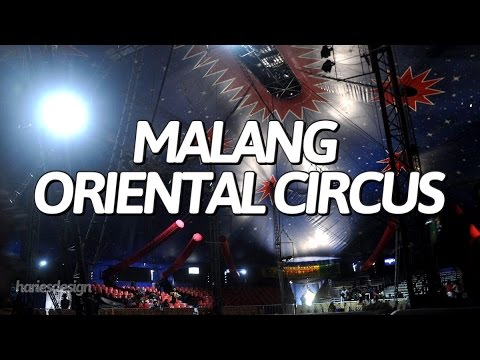 Circus Oriental Malang - The Show