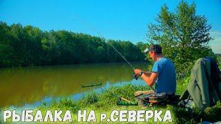 Рыбалка на Фидер Река Северка Половодье застало врасплох