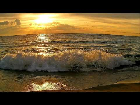 Veselin Tasev - Desire (original mix) [HD]