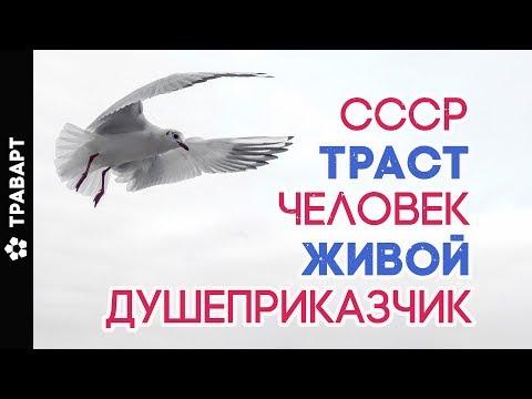 Траст Человек Живой Душеприказчик Естественное право Божественные законы СССР  Категорическкий отказ