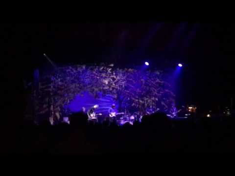 """Wilco """"Impossible Germany"""" Guitar Solo // Live @ The Chicago Theatre 2.22.17"""