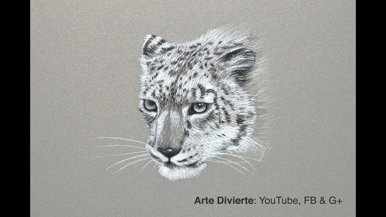 Excepcional Leopardo De Las Nieves Para Colorear Adorno - Dibujos ...