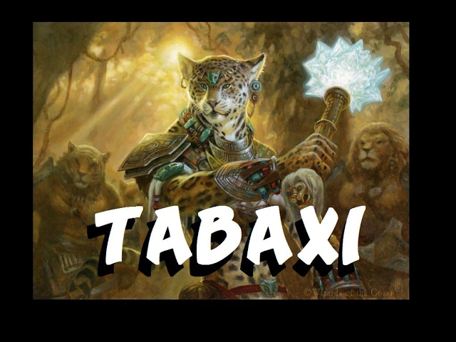 Dungeons And Dragons Lore Tabaxi Youtube