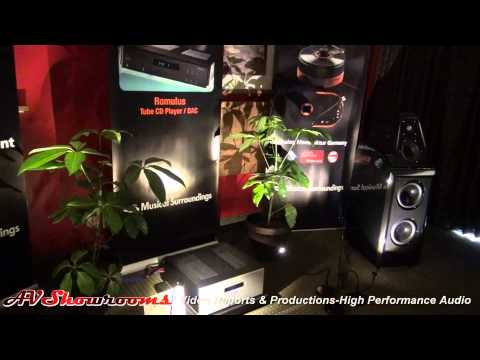 Musical Surroundings, Aesthetix, Clearaudio, Benz Micro, Wilson Audio