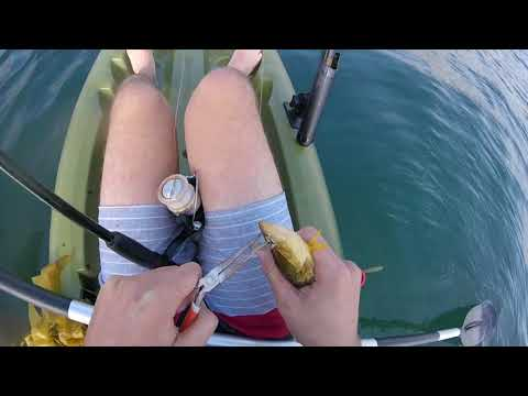 Kayak fishing in Malibu