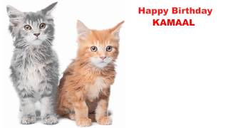 Kamaal  Cats Gatos - Happy Birthday