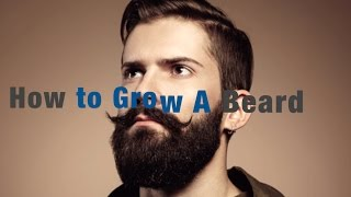 How to Growing a Manly Beard (and my personal progress)