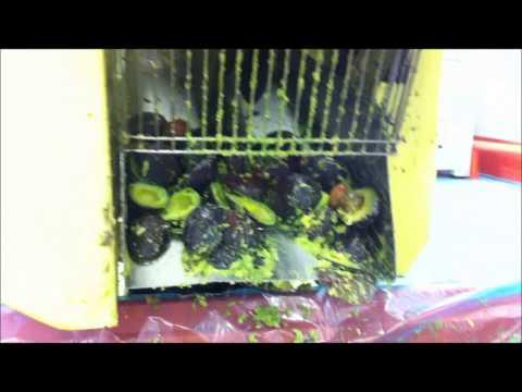guacamole machine