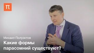 Парасомнии - Михаил Полуэктов