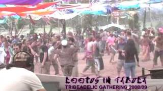 Footage from the Tribeadelic Gathering NYE Festival 08/09 Part Two ...