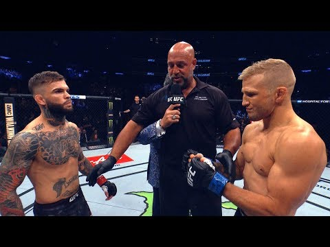 UFC 227: Dillashaw vs Garbrandt 2 - In Search of a Dream