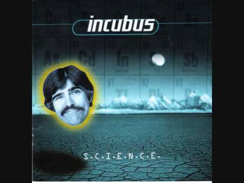 Incubus-New Skin