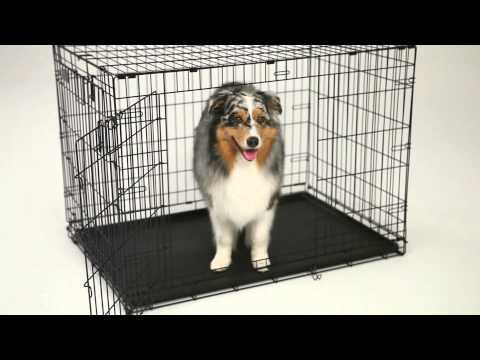 LifeStages ACE Double Door Dog Crate