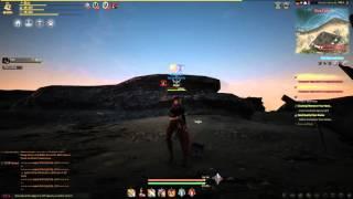 black desert online beginners guide