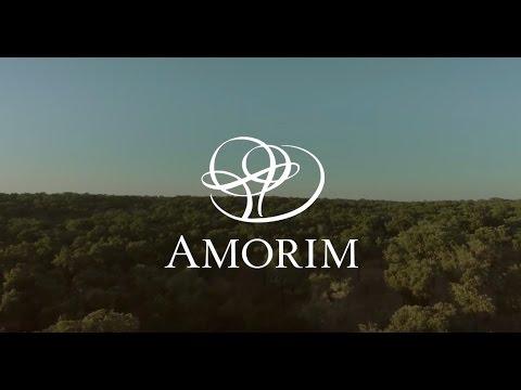 António Rios Amorim – CEO, Corticeira Amorim - Listed Family Businesses Stories [Part 1]