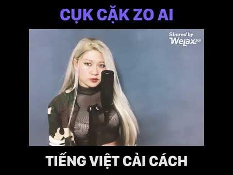 Bài Hát Tiếng Việt Cải Cách Hay Nhất !